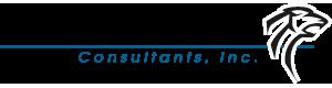 Cougar Consultants Inc company